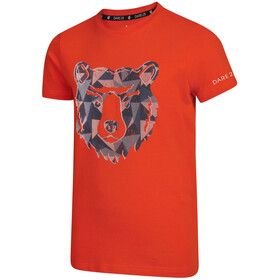 Dare 2b Frenzy T-paita Pojat, cajun orange